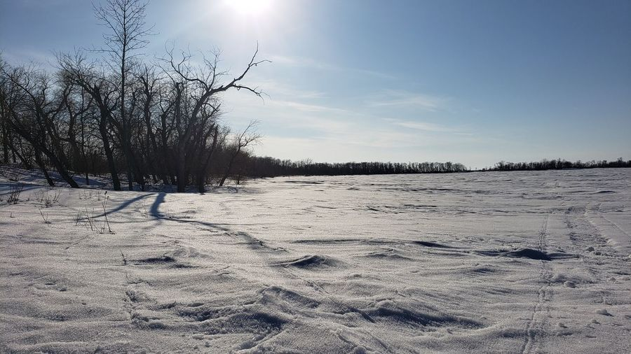 Scenic view of snowy field against sky during winter