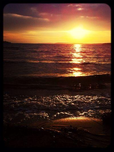 Guten morgen, Strand, Sonnenaufgang, perfekt Morning