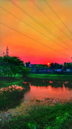 When you are in the light, Everything follows you, But when you enters into the dark, Even your own shadow doesn't follow you.. Bangladesh Dhaka Winnipeg Moddysky Modern Sky And Clouds Sky_collection Skyporn Greenery Naturelovers Natureporn Colors Of Nature Sad & Lonely Sunset_collection Sunset_collection Sunlight Sunset #sun #clouds #skylovers #sky #nature #beautifulinnature #naturalbeauty #photography #landscape Sundown Summer Sunset Sunny Plant Life Growing Orange Background Sky Only Sun Lounger Foggy Blooming Dew Petal
