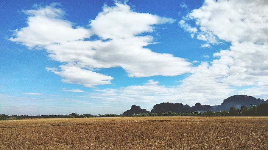 the cloud in summer Cloud - Sky Sky Summer No People EyeEmNewHere Farm Wallpaper Landscape Land Colors