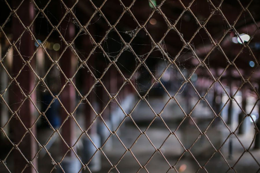 Spider Man Architecture Backgrounds Barrier Boundary Built Structure Chainlink Fence Close-up Cobweb Crisscross Day Fence Focus On Foreground Full Frame Metal No People Outdoors Pattern Protection Safety Security Selective Focus Steel Cage