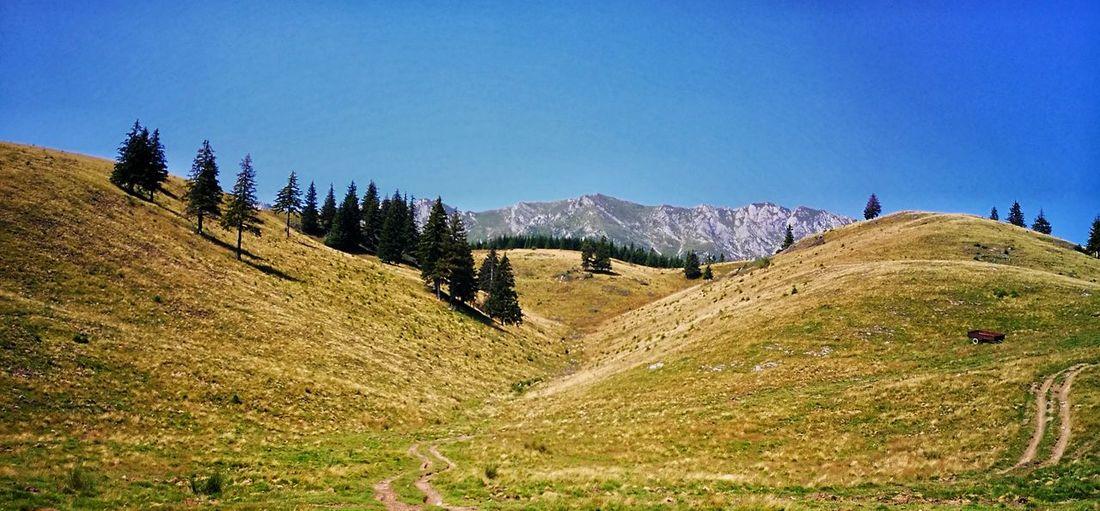 Romanian mountains Landscape Outdoors Mountain Range Rural Scene Lastsummer Missmycountry