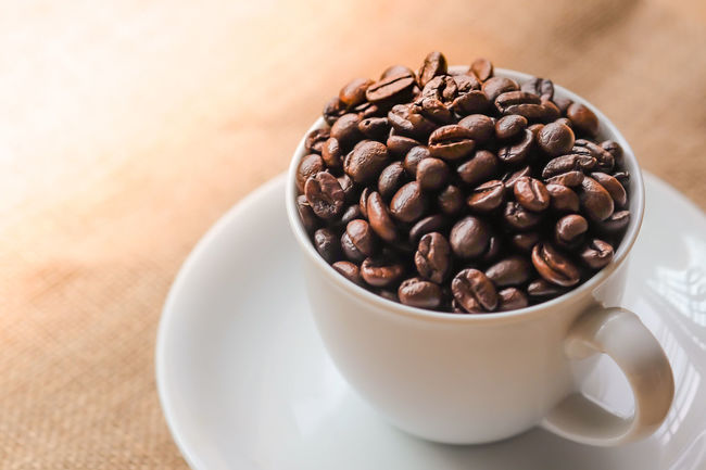 The white cup of coffee beans in the morning light. Brown Business Concept Coffee - Drink Coffee Bean Coffee Cup Cup Drink Espresso Food And Drink Freshness Indoors  Mocha Morning Light Roasted Roasted Coffee Bean Still Life
