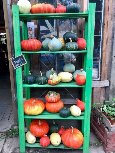 Harvest time and pumpkins Ekerö Green Color Red Color Yellow Color The Week on EyeEm Pumpkins Food And Drink Large Group Of Objects Multi Colored Food For Sale No People Healthy Eating Arrangement Freshness