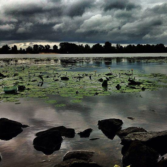 #hdr #hrd_pics #kyiv_sky #nature #dnepr #river #ua_iphoneography #kiev_ig #kievblog #insta_kiev #ukraine_art #insta_kyiv #инстаграм_порусски #kiev #ukraine #iphonesia #photooftheday #photooftheweek #айфонография #iphoneonly #beautiful #amazing #киев #укра Beautiful Ua_iphoneography HDR Real_ukraine Kievblog Ukraine_art Amazing инстаграм_порусски Kiev Insta_kyiv Iphoneonly Kyiv_sky Photooftheday Insta_kiev Iphonesia айфонография Ukraine Photooftheweek Kiev_ig украина HRD_pics River Dnepr Nature Киев