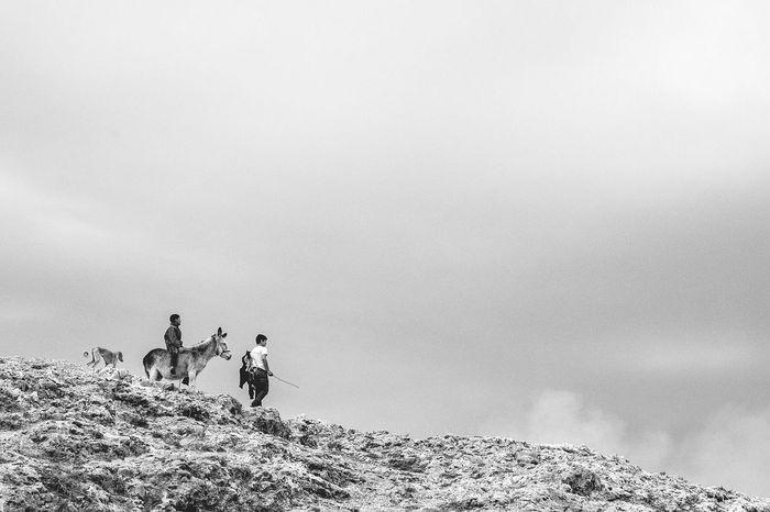 Travel Photography Shepherd Fujifilmexperience FUJIFILM X-T1 Black And White