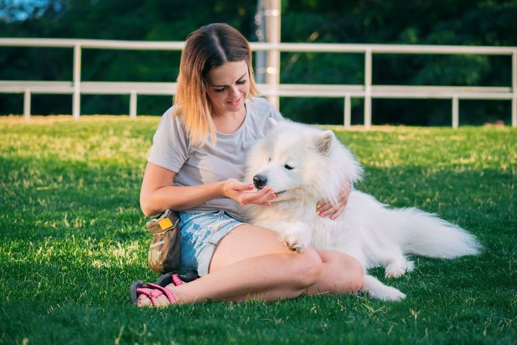 Dog Pets Grass Smiling Happiness Friendship Togetherness Animal Love Puppy Cheerful Domestic Animals Sitting Beauty Outdoors Summer Relaxation Young Adult Nature Real People Kiss Dogs (null)Samoyed Nature