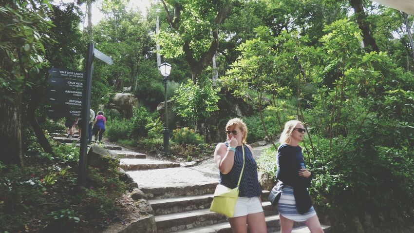 Togetherness Day Tree People Only Women Standing Friendship Outdoors Growth Real People Adult Young Women Blond Hair Nature Full Length Palacio Da Pena - Sintra Nature Signboard Stairs To Nowhere Stairs In Nature