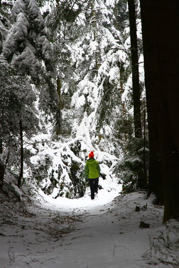 Adventure Beauty In Nature Cold Temperature Day Full Length Leisure Activity Lifestyles Mountain Nature One Person Outdoors People Real People Rear View Scenics Snow Tranquil Scene Tranquility Tree Warm Clothing Weather Winter