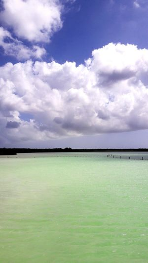 Kaan Luum Paradise Kaan Luum Naturaleza Sky Cloud - Sky Quintana Roo Mexico_maravilloso Bella Vita Cloud - Sky Sky Water Nature Outdoors Beauty In Nature Day