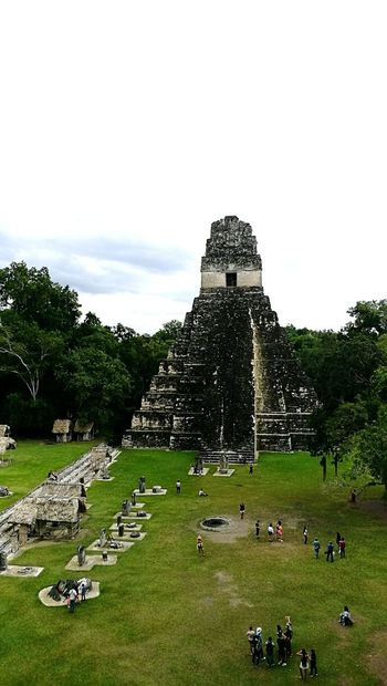 Parque Arqueológico Tikal | A must visit in Guatemala, the place most magical of all. it's hard to understand the mayan civilization, how great it was and how they disappeared, but how the managed to transfer their magic to their structures. PerhapsYouNeedALittleGuatemala An Eye For Travel #guatemala #tikal Piramid Outdoors Grass Day Sky No People Architecture Nature Ancient Civilization Vacations Archaeology History Old Ruin Travel Pyramid This Is Latin America The Architect - 2018 EyeEm Awards
