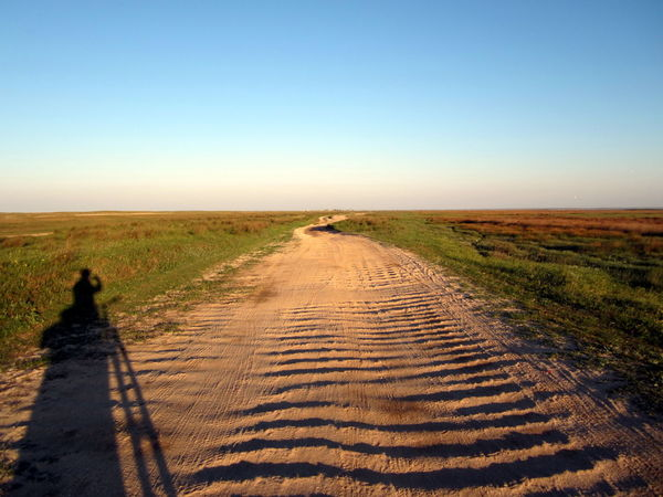 wavy sandy road Adventure Arid Climate Beauty In Nature Clear Sky Copy Space Day Full Length Grass Horizon Over Land Landscape Nature Outdoors People Shadow People Silhouette Photographer Shadow Photographer Silhouette Road Sandy Road Scenics Sky The Way Forward Tire Track Wavy Road