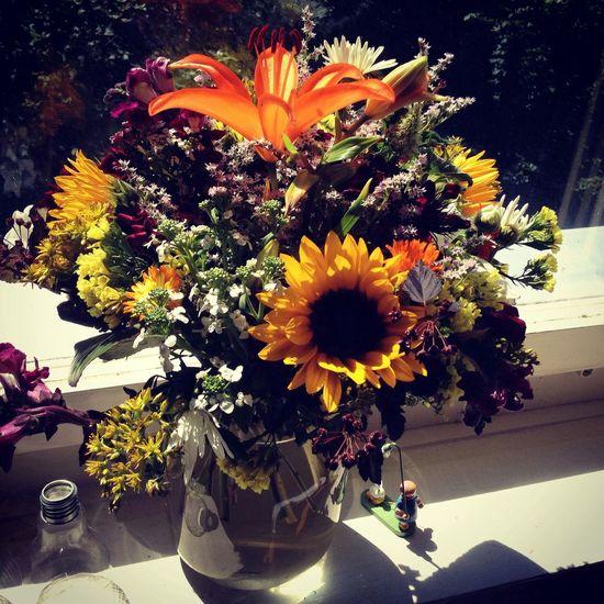 Flowers Blumen Summer Sommer
