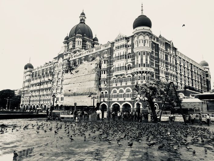 No matter what broke you build yourself again and stand tall and move on to prove the world that time doesn't stop for no one and nor should you Hotel Survival Taj Mahal Power Beauty Streetphotography Raw Photography Strength Stand Tall Cityneversleeps Mumbai 26/11 Attack Life