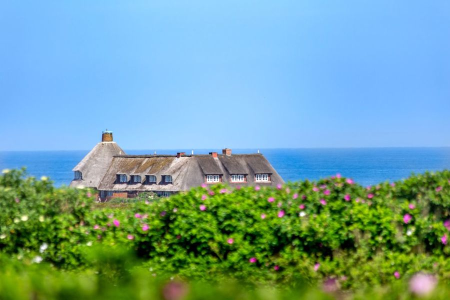 Sylt Kampen, Sylt Kampen Sky Plant Built Structure Architecture Water Building Exterior Sea Horizon Scenics - Nature Land Nature Clear Sky Horizon Over Water Copy Space Beauty In Nature Day Blue Building No People Outdoors