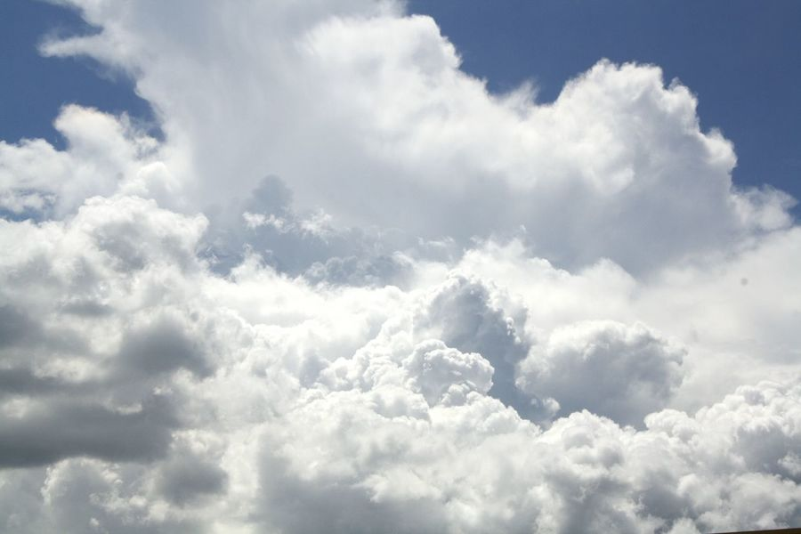 Heaven☁. Beauty In Nature Cloudscape Scenics Cloud - Sky Tranquility White Day Backgrounds Cloud Tranquil Scene Sky Only Sky Fluffy Low Angle View Outdoors Majestic Full Frame Blue Heaven Nature