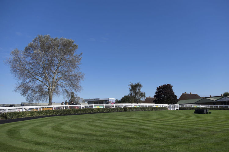 Parade ring at the races Blue Clear Sky Grass Horse Racecourse Horse Racing Parade Ring Sport Sports Sunny