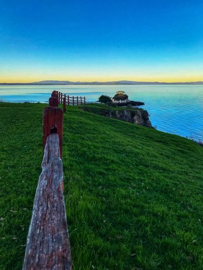 China Camp Sea Grass Horizon Over Water Nature Water Scenics Tranquility Tranquil Scene Beauty In Nature Green Color Day Blue No People Outdoors Clear Sky Sky Beach California Dreamin
