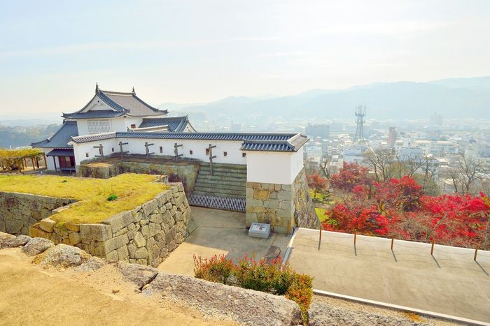 Tsuyama castle view and red autumn leaves, Japan Autumn Colors Castle Japan Japan Photography Japanese  Japanese Castle Japanese Culture Japanese Style Architecture Beauty In Nature Building Exterior Built Structure Day High Angle View House Mountain Nature No People Okayama Outdoors Sky Sunlight Travel Destinations Tree Tsuyama