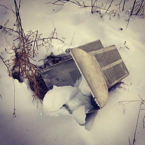 Последний из могикан монитор зима сырец Syrets