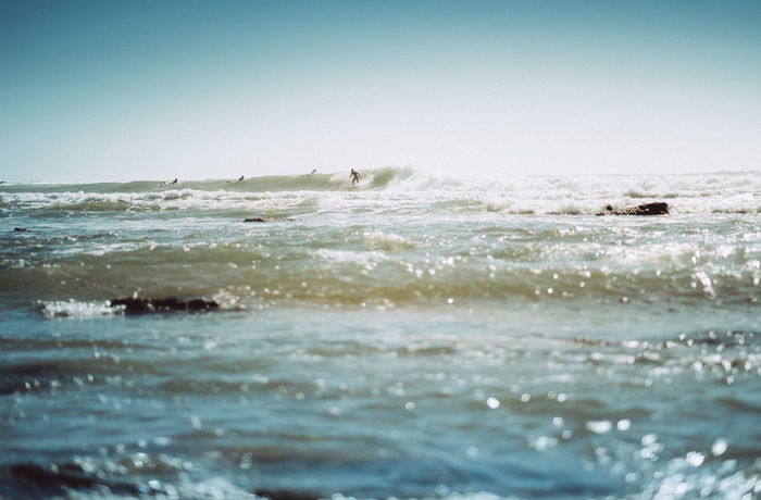 Surf Surfer Travel Photography Copy Space Horizon Over Water Motion Ocean Outdoors Scenics - Nature Sea Sports Surfing Water Wave