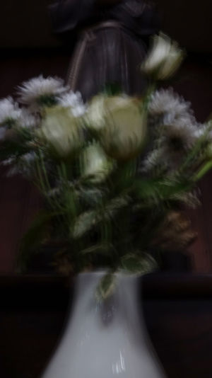 Blurred Motion Love Blur Blurlove Flowers In A Church Flowersandaholyman Lovethisone Vacations In A Church Flower Bunch Of Flowers Blur Is Beautyfull