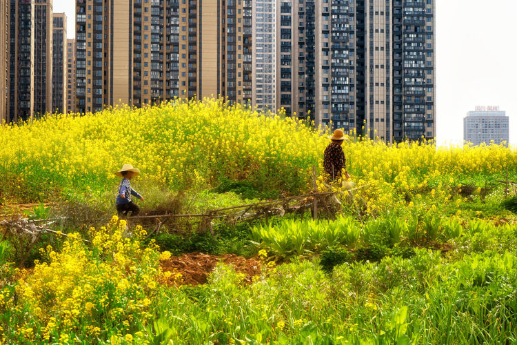 Adult Architecture Building Building Exterior Built Structure Child Childhood City Day Full Length Grass Landscape Nature Office Building Exterior Outdoors People Plant Skyscraper Two People Water Stories From The City