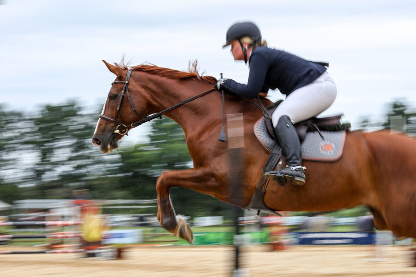 Jump Activity Competition Domestic Animals Hoofed Mammal Horse Horseback Riding Horsejumping Jumping Mane Motion One Animal One Person Outdoors Riding Saddle South Africa Sport