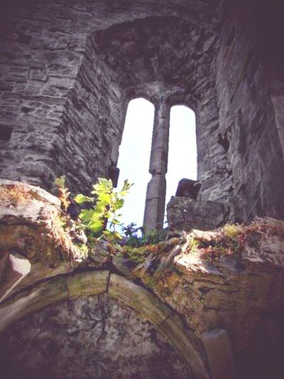 Old Ruin History Rock - Object Ancient No People Travel Destinations Built Structure Ancient Civilization Architecture Day Indoors  Nature Sky Blarney Castle Ireland