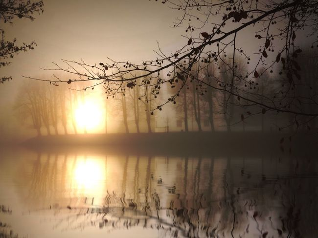 Close-up Tranquility Sunset Waterfront Reflection Nature Water Sun Symmetry Lake Standing Water Day Beauty In Nature Fog Foggy Mist Scenics Outdoors Nature