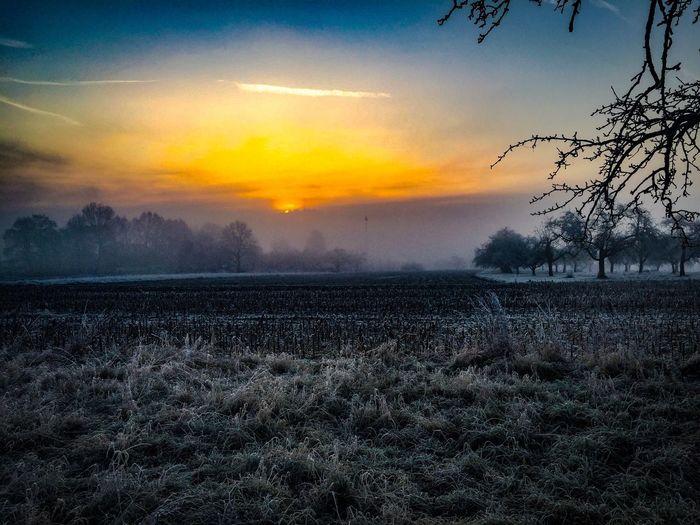 Sunset Thewinteritscoming Nature