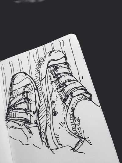 Drawing Converse Jack Purcell