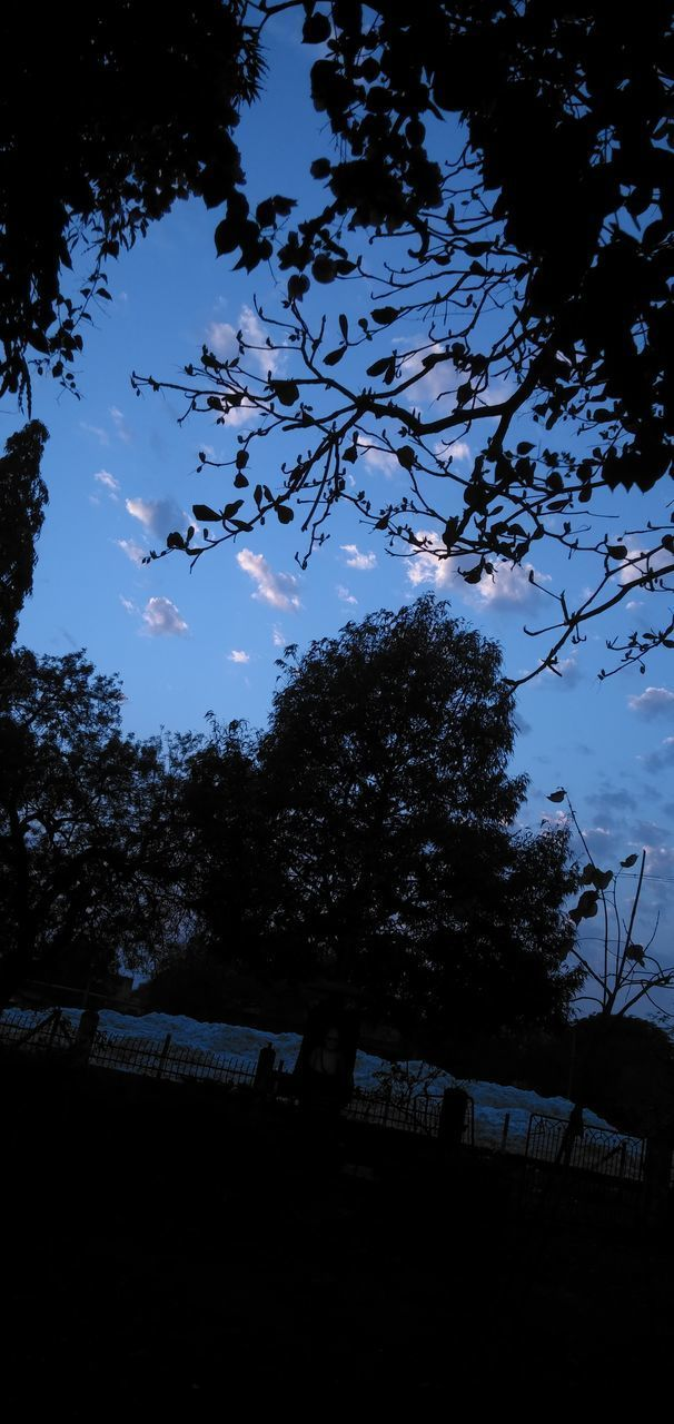 LOW ANGLE VIEW OF SILHOUETTE TREE AGAINST SKY AT DUSK