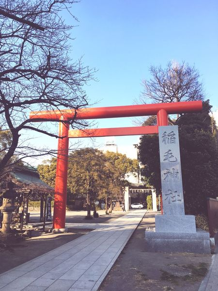 Peace Japan Cycling A Shrine TORII Tree Day Outdoors Built Structure No People Bare Tree EyeEmNewHere