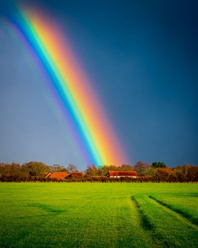 Rainbow Beauty In Nature Multi Colored Tranquil Scene Environment Scenics - Nature Tranquility Landscape Sky Land No People Field Nature Idyllic Rural Scene Tree Non-urban Scene Green Color Double Rainbow
