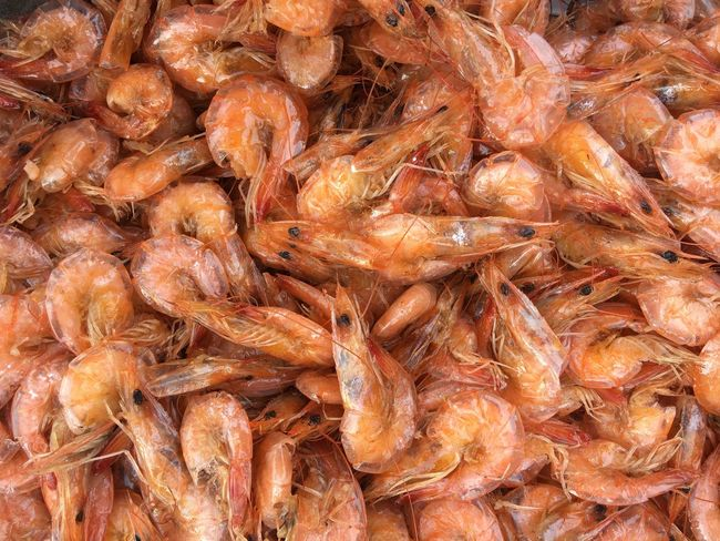 Seafood Food And Drink Food Full Frame Freshness Market Backgrounds No People Abundance Healthy Eating Prawn Fish Market Close-up Indoors  Ready-to-eat Day