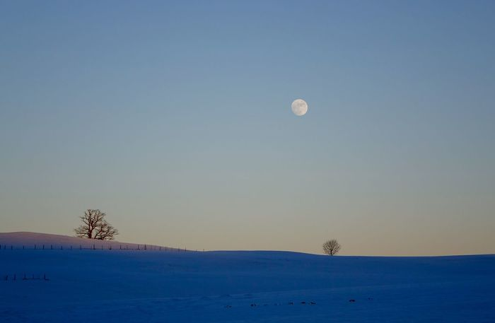 Atmosphere Cloud Copy Space Dusk Landscape_Collection Majestic Moon Outdoors Silhouette Snow ❄ Tranquil Scene Wintertime ⛄