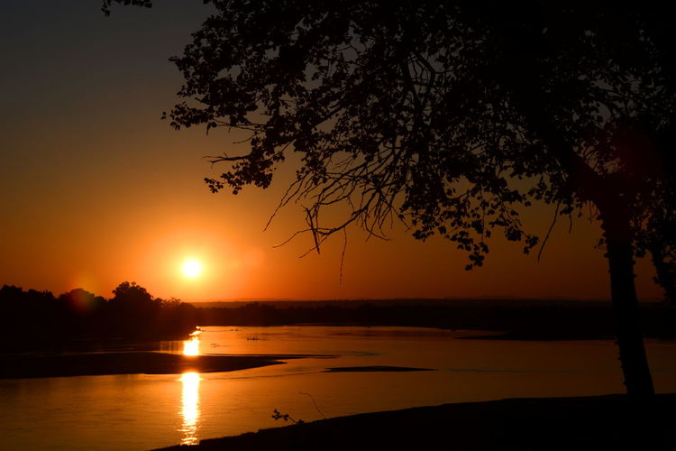 Sunset on Luangwa river. South Luangwa National Park. Zambia Africa African African Park Atmospheric Mood Beauty In Nature Lens Flare Luangwa National Park LuangwaRiver National Park Nature Orange Color Reflection Safari Scenics Silhouette Sunset Sunsetporn Tranquil Scene Tree Water Zambia Zambian Sunset Miles Away