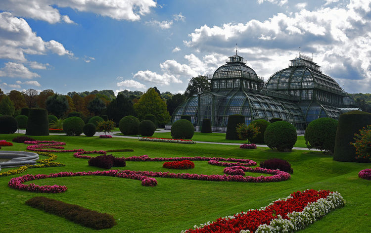 Palmenhaus Vienna Architecture Beauty In Nature Building Exterior Built Structure Cloud - Sky Flower Flowerbed Flowering Plant Formal Garden Garden Grass Green Color Growth Hedge Nature No People Ornamental Garden Outdoors Park Plant Schönbrunn Sky Topiary A New Beginning EyeEmNewHere