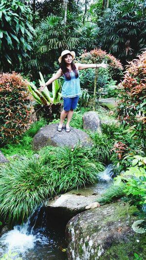 Enjoy Green Beautiful Nature Stream