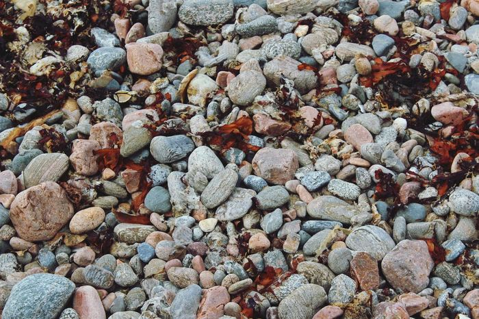 Backgrounds Beach Beauty In Nature Pebble Full Frame Nature Pebble Beach Abundance