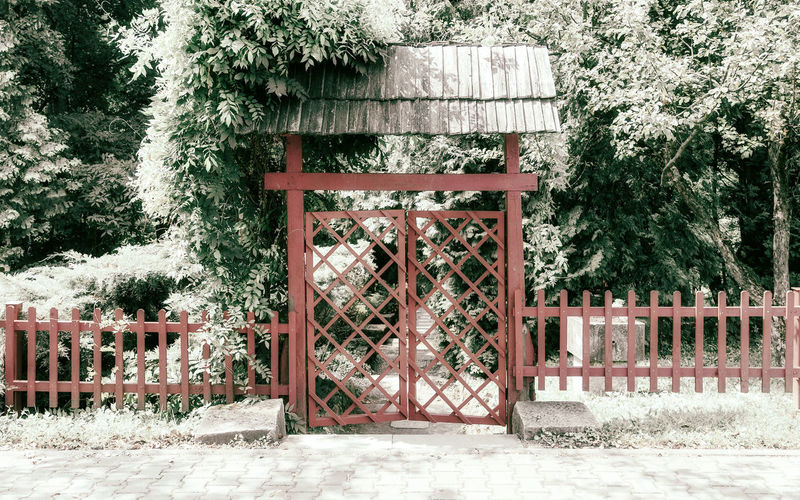 Closed gate against trees