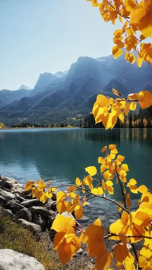 Mountain Lake Water Scenics Travel Destinations Tree Landscape Nature Outdoors Reflection No People Mountain Range Fall Beauty Fall Colors Rocky Mountains Canmore Alberta Canada Canmore Hiking Alberta Canada Canada150 Sky Tranquility Tree Beauty In Nature