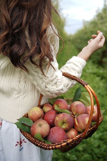 Midsection of woman holding apple in basket