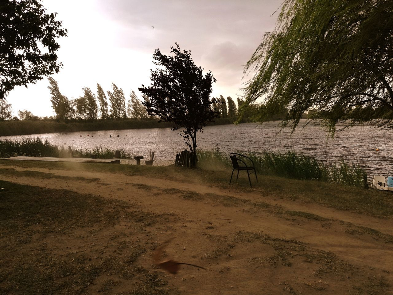 tree, nature, water, tranquility, tranquil scene, landscape, sky, scenics, no people, beauty in nature, grass, outdoors, lake, beach, sand, day, growth
