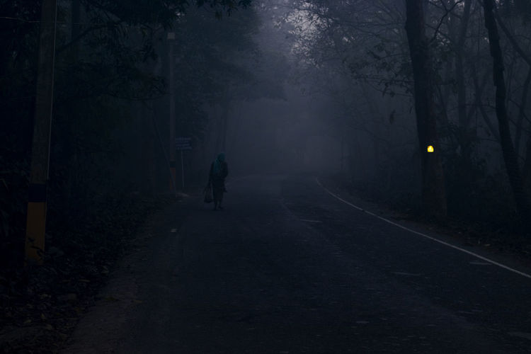 Rear view of person walking on street at night