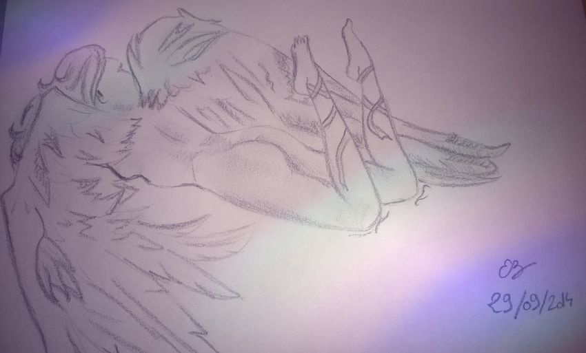 Drawing Fallen Angel Angel Nudes