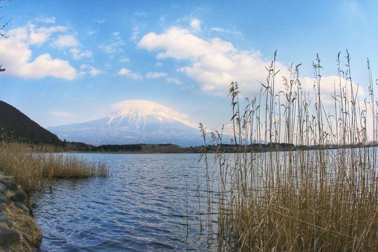 Mt.Fuji Japan Landscape Water Mountain Lake Bird Reflection Sky Landscape Cloud - Sky Mountain Range Snowcapped Mountain Snowcapped