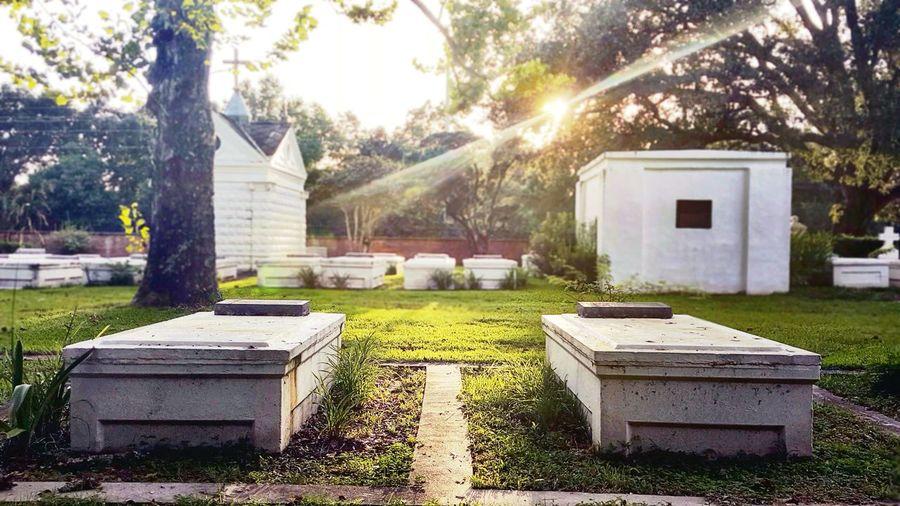 Graveyard Graveyard Beauty