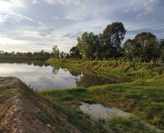 Lake Reflection Sky Landscape Cloud - Sky Grass